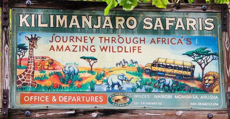 Image of: Disneys Animal Animal Kingdom Blog Disney Nerds Walt Disney World The Disney Nerds Podcast Disneys Kilimanjaro Safari Rare Sightings The Disney Nerds Podcast
